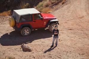 farabee-s-jeep-rentals